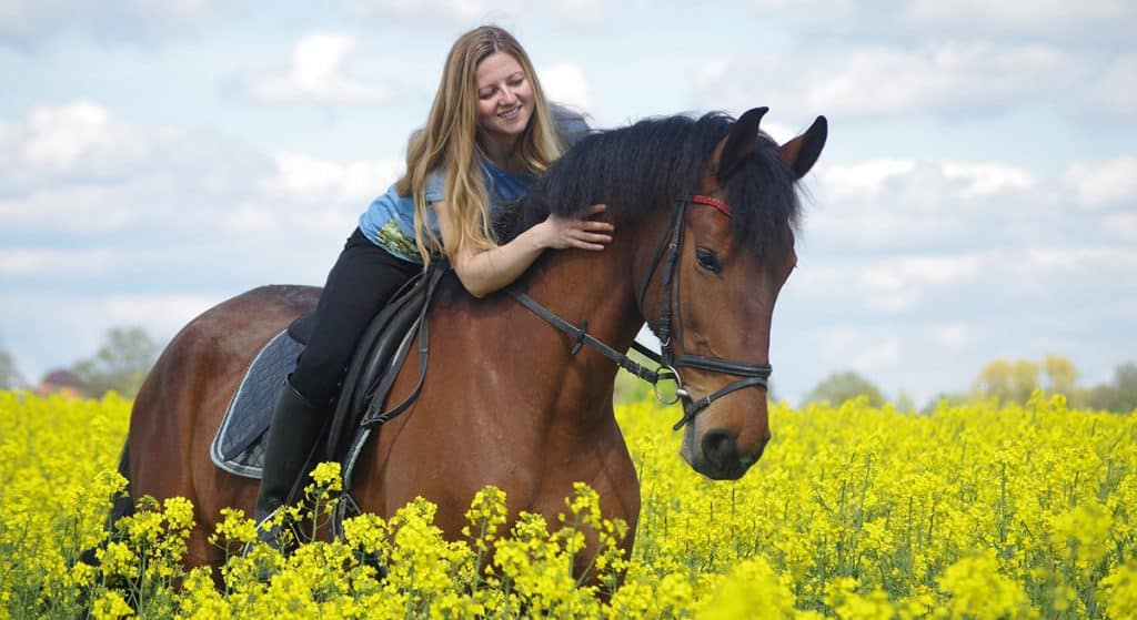 Horse riding with back pain