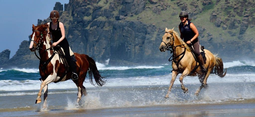 What's the difference between Western & English Riding?