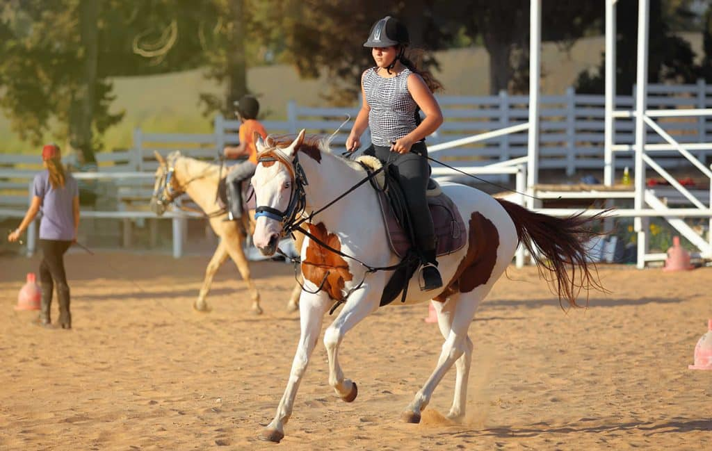 It can be difficult to get back into horse riding