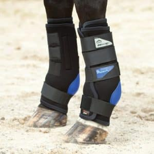 Magnetic boots can help horses with arthritis
