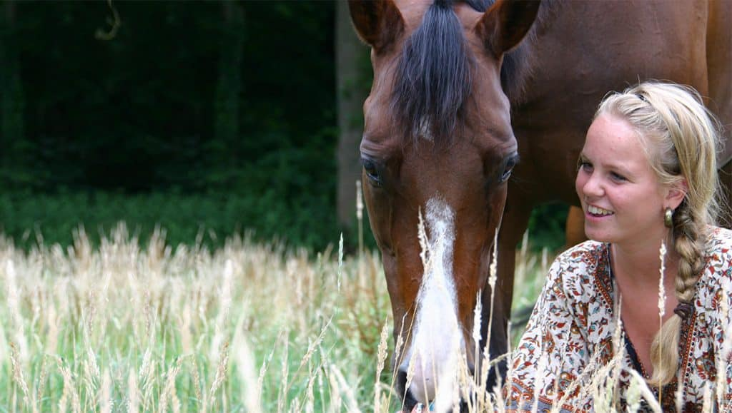 Some people prefer leasing a horse to owning one