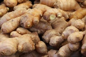 Ginger can be great at helping your horse's digestive system healthy