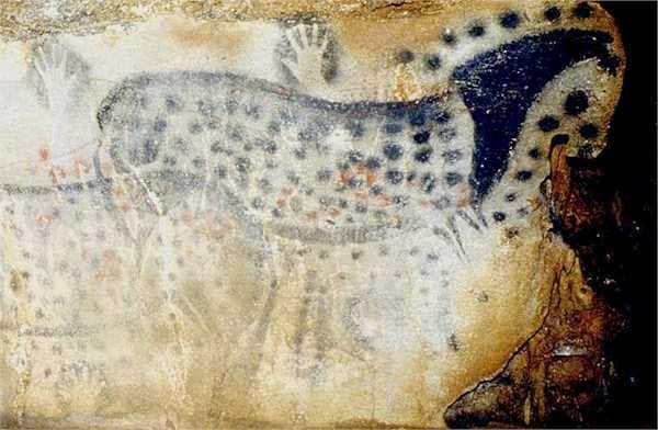 Horses with spotted coat patterns are thousands of years old