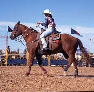 Take a riding instructor with you when looking a buying a horse