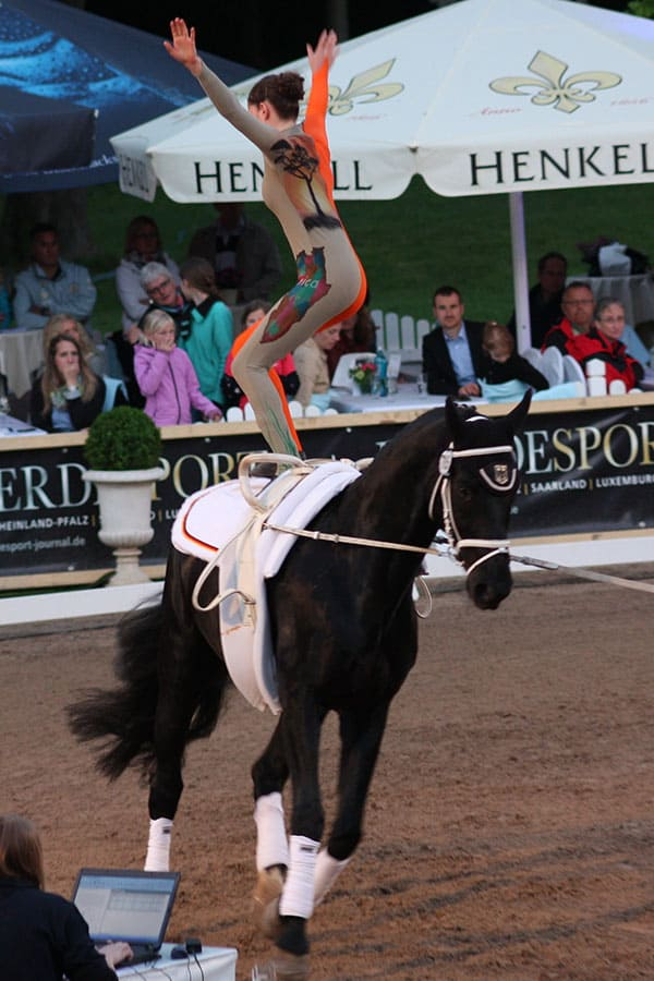 In equestrian vaulting its important you don't try to ride the horse
