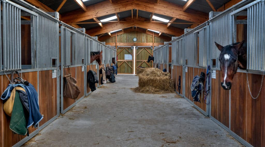 A boarding yard is the most common place to keep a horse