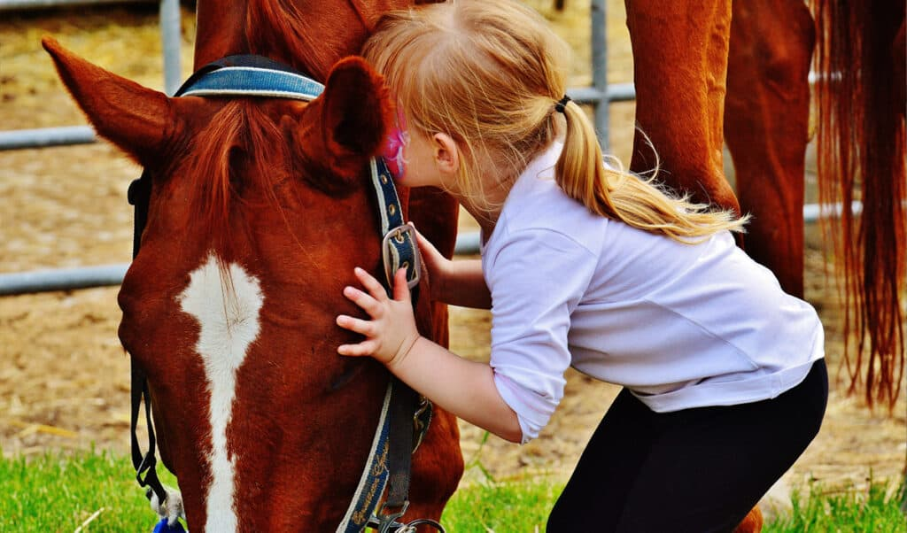 The 12 best horse and pony breeds for kids