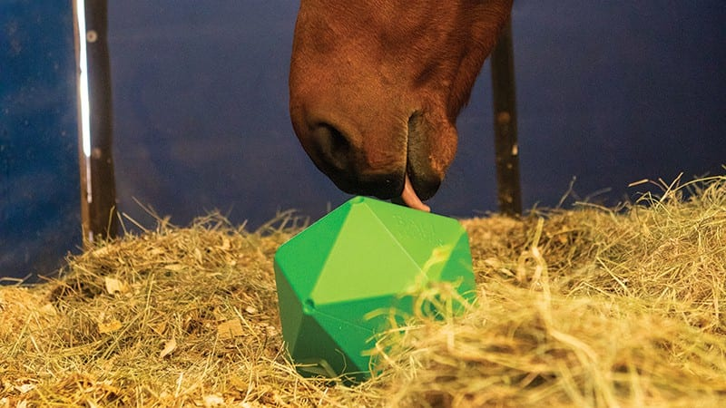 Ball feeders can be great to keep your horse occupied and therefore less likely to become bored