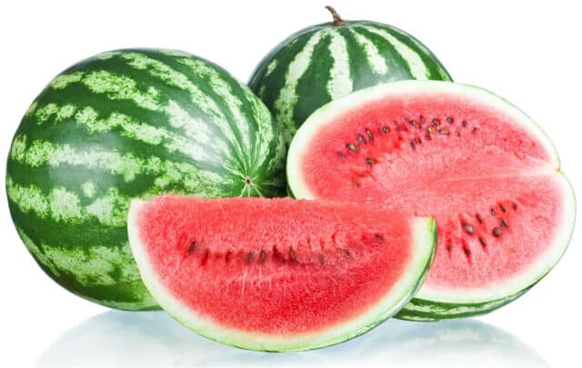 Make sure you don't over feed your horse watermelon