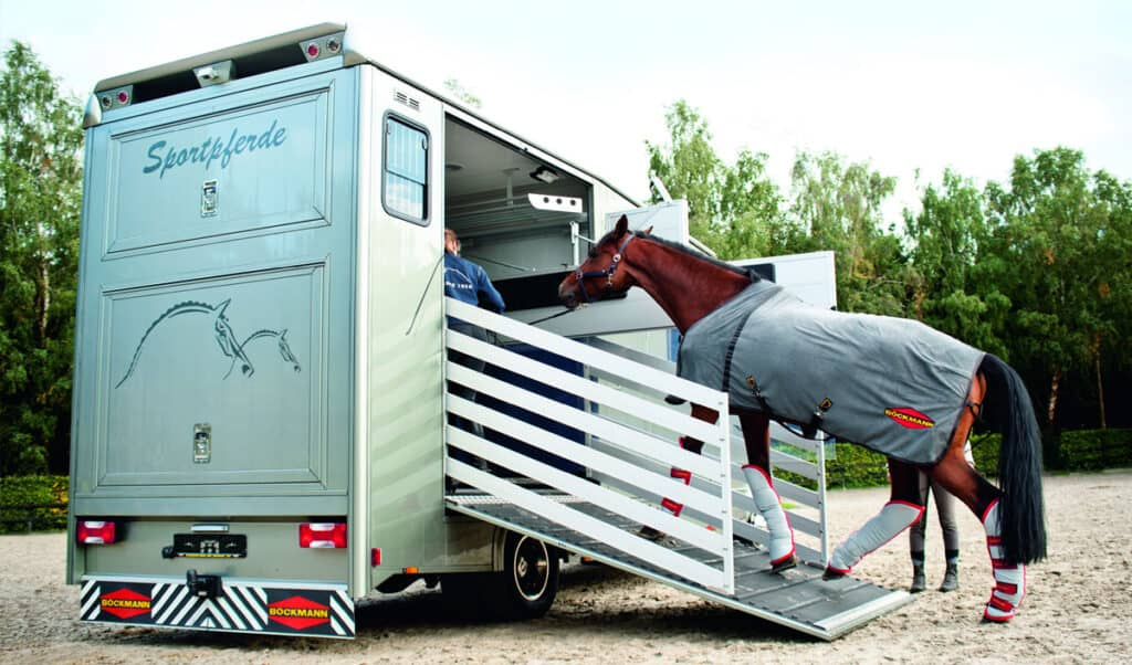 Training methods to help you successfully laid a difficult horse - every time