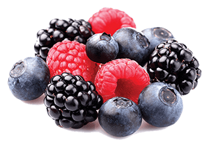 Horses can eat most berries plus they're full of goodness