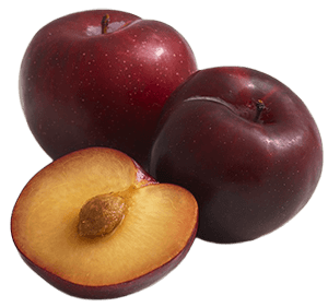 The flesh of plums make a healthy and tasty treat for horses