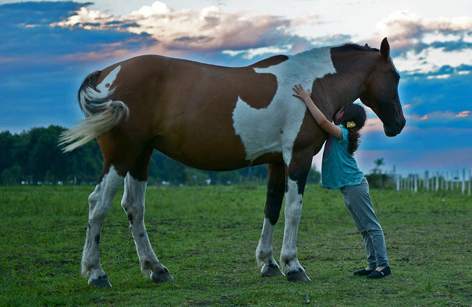 Make sure your horse is the right size for you