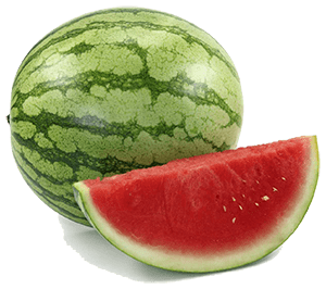 Watermelons are perfect for horses, they're full of refreshing water and have enough sweetness to appease your horse's sweet tooth