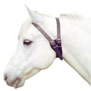 Special collars can be used to stop your horse windsucking
