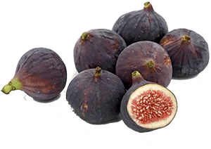 Horses can eat figs regardless of whether they're fresh or dried