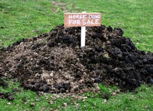 Why not sell or give away horse manure rather than paying for it to be collected