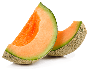 Watermelons are especially good for horses, but all melons make healthy treats