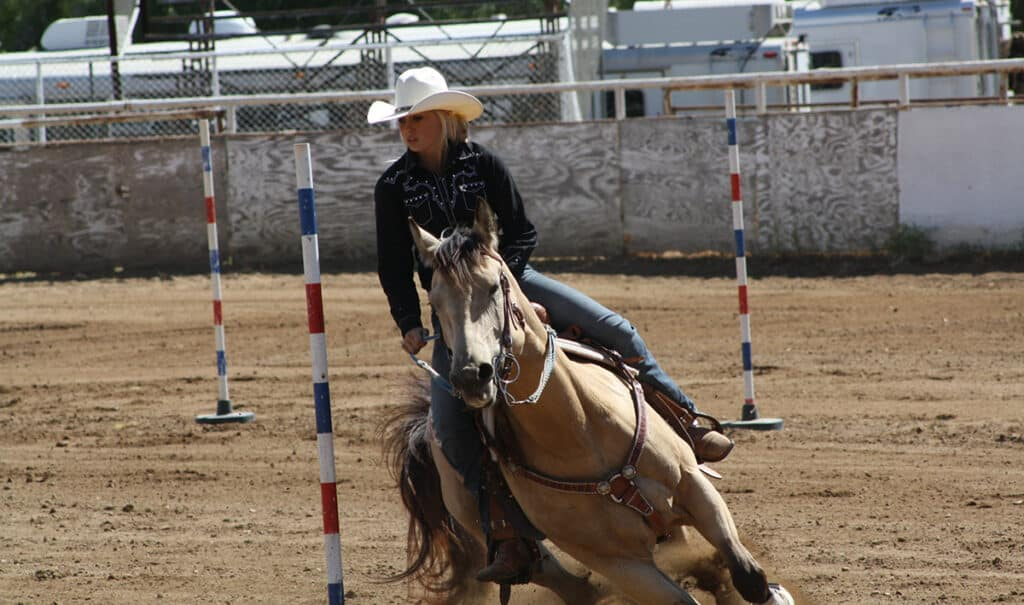 Sports such as pole bending, barrel racing, and eventing are more dangerous that pleasure riding