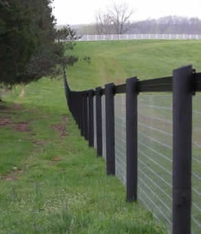 Coating wooden fence posts with a preservative can help to stop horses chewing them