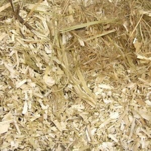 Flax makes a comfortable and soft bed for horses
