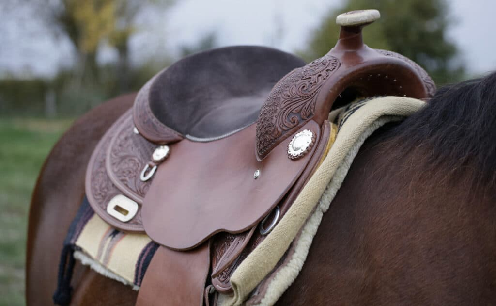 Cleaning your leather saddle will prolong it's lifespan