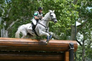 Cross country is one of the three stages in eventing