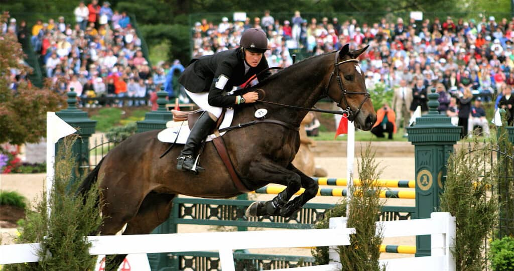 35 different horse jumps explained