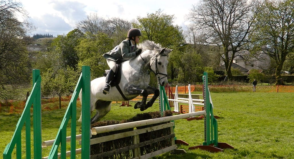 How often should be jumping your horse