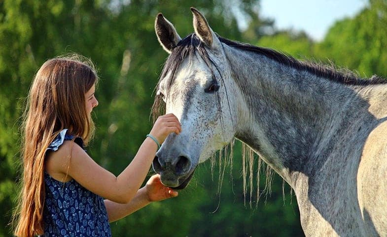 It can be very difficult for children when they outgrow their horse