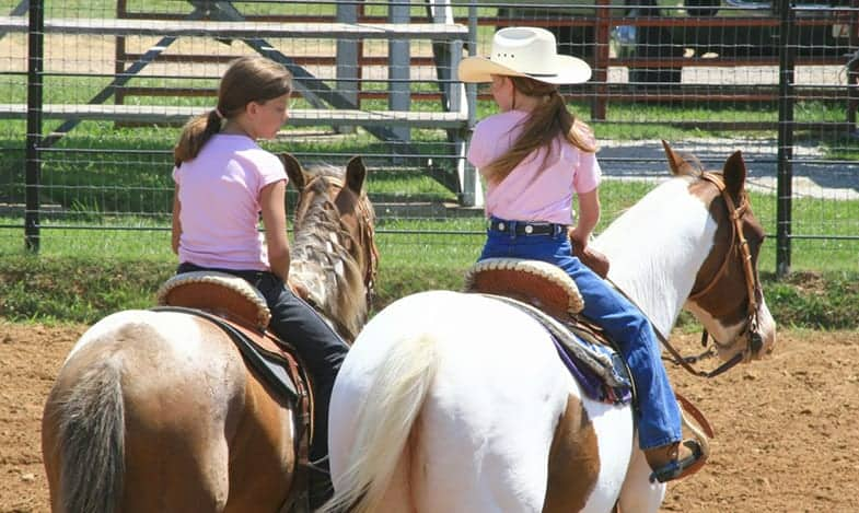Owning a horse can be a great way of making new friends