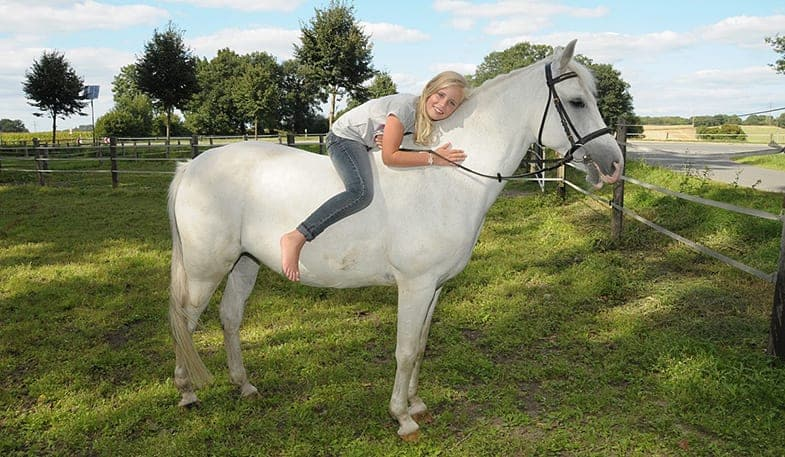 There are advantages and disadvantages of buying a horse for your child