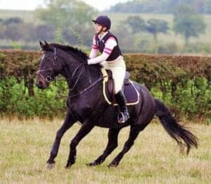 It can be difficult to stop a horse persistently bolting