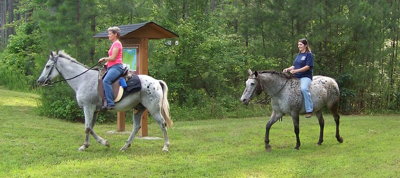 It can be difficult to have a vacation if you own a horse
