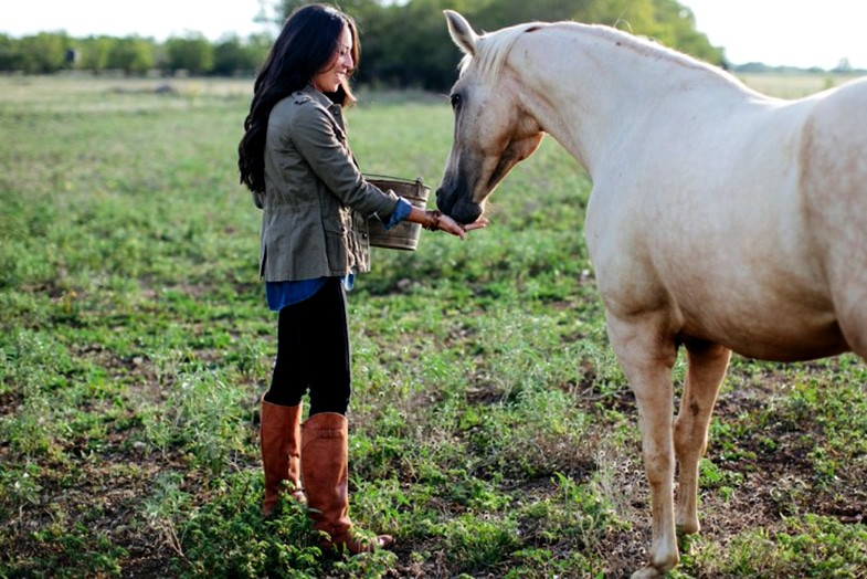 Don't try and catch your horse every time you go into his field