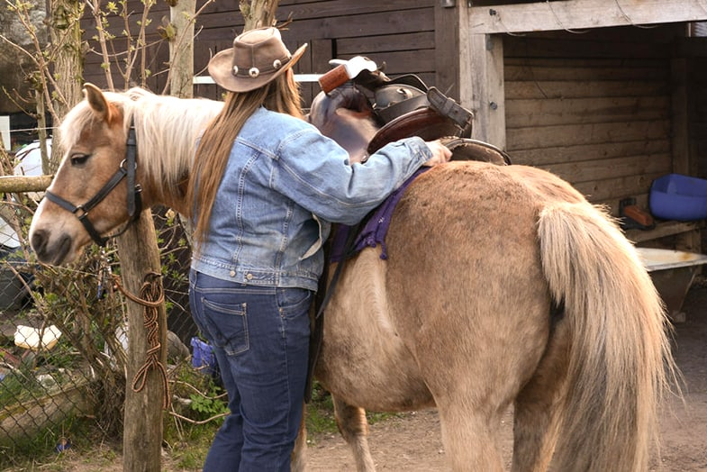 When considering a horse riders weight you should also include the tack